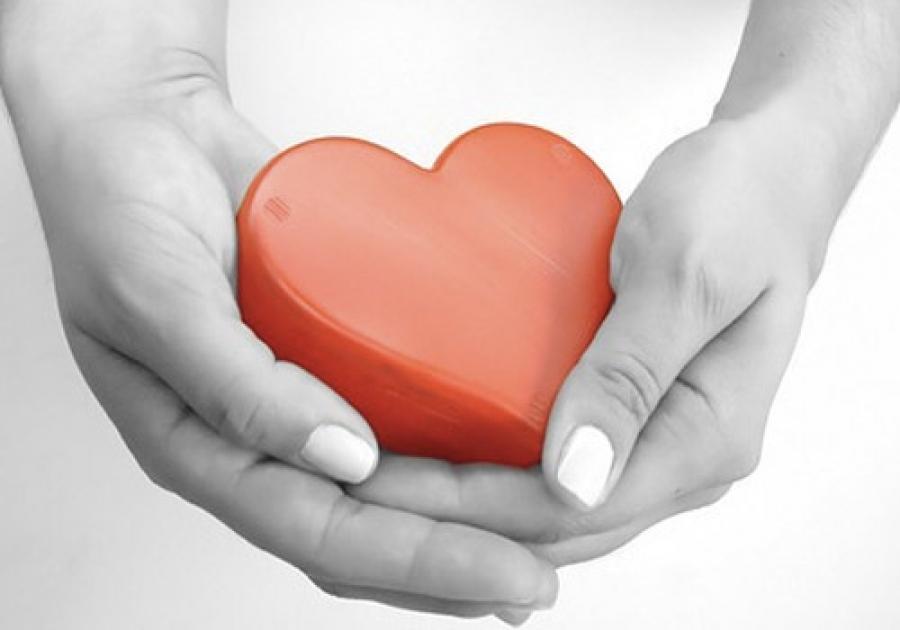 La Giunta aderisce al progetto 'Donare gli organi: una scelta in Comune'