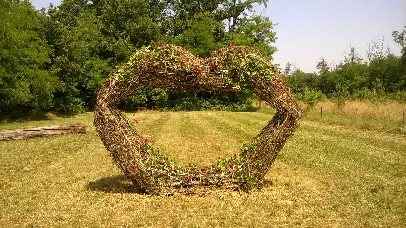 'Land Art in Cascina' al Bosco WWF di Vanzago