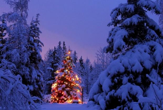 Aria di Natale a Cinisello