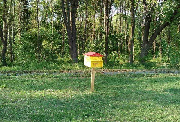 Alla scoperta del progetto Bee Green