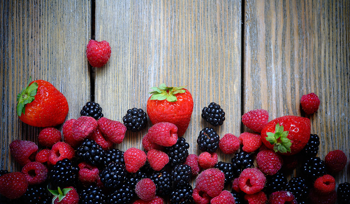 Piante Di Frutti Di Bosco : Agricoltura boom di piante aromatiche e frutti bosco