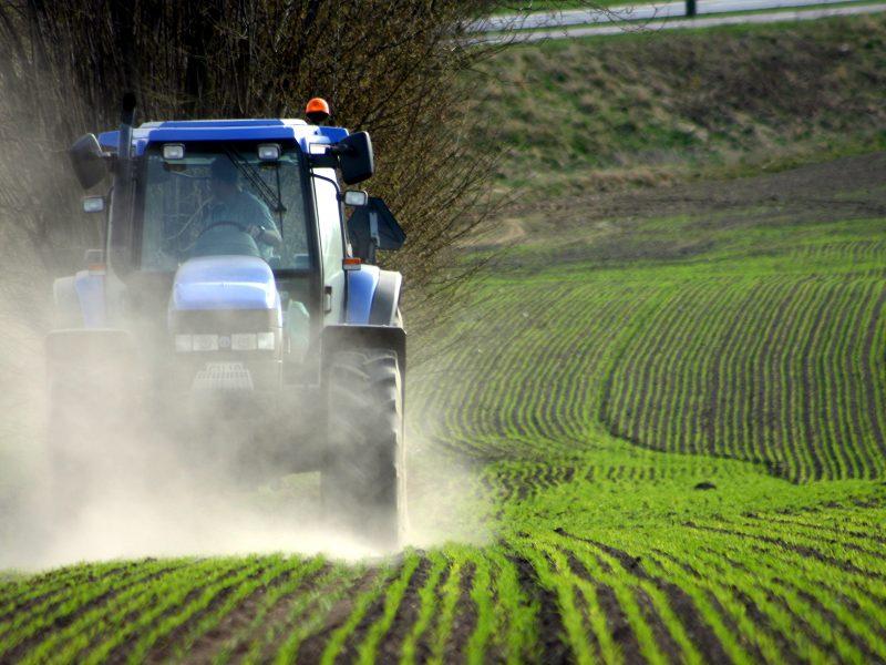 Si consolidano le imprese agricole, stabile il prezzo dei terreni