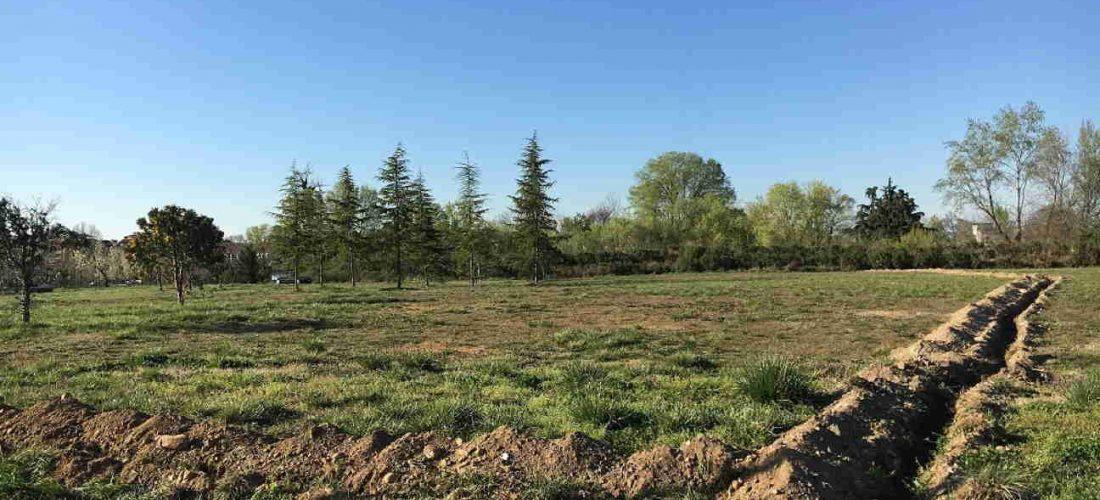 Il Nuovo Centroparco è sempre più verde e accessibile: in arrivo 800 piante e piste ciclabili