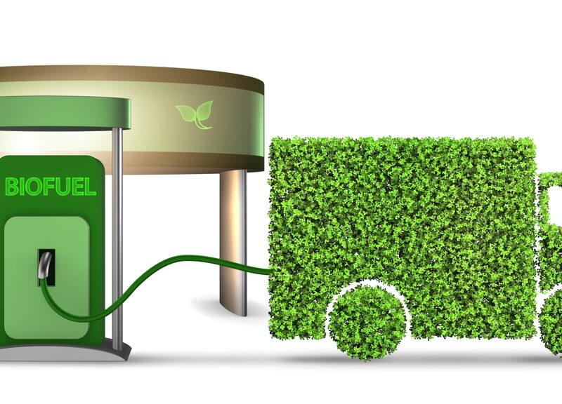 Cogeser Energia: a Melzo un distributore di carburanti alternativi